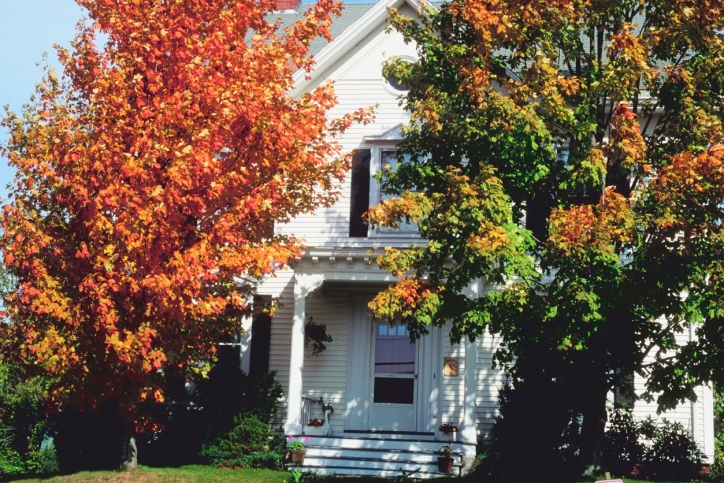 Autumn Home Staging: How to Set Your Home Up to Match the Warm, Rich Colors of Autumn