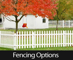 Do Fence Me In, Here Are A Few Good Yard Fencing Options