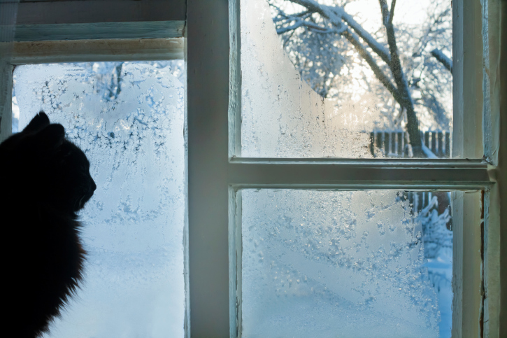 Prevent Icy Drafts with Our Easy Three-step Guide to Weatherizing Your Windows