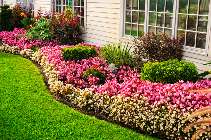 Spring Landscaping Tips staging tips: let's talk landscaping and how to prepare your yard