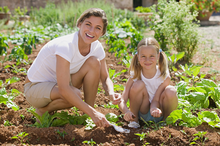 Geting Kids Outside: Start A Veggie Patch Project Today